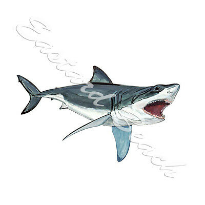 GREAT WHITE SHARK SALTWATER AUTO BOAT RV HIGH QUALITY VINYL DECAL STICKER