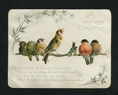 Victorian Christmas Card,Goldfinch,Bullfinch,Greenfinch on Branch.