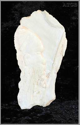 Vintage talc stone carving of an Aboriginal male head 14cm long