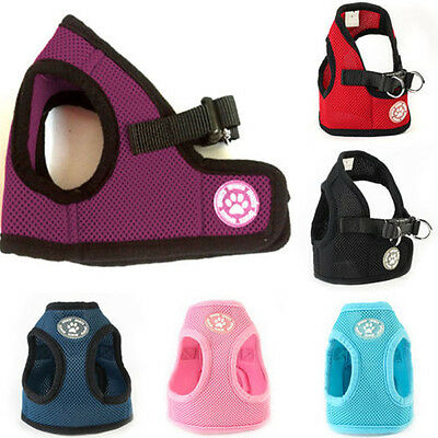 Small Dog Puppy Pet Adjustable Harness Walking Soft Mesh Chest Vest in Walk