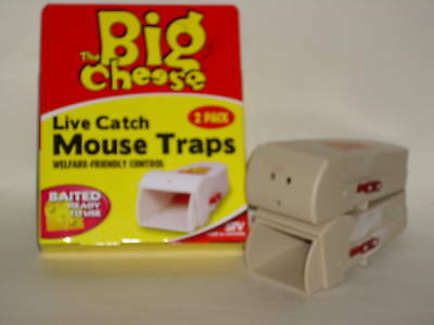 New The Big Cheese Live Catch Mouse Trap Humane Baited Poison Free Pk2 STV155