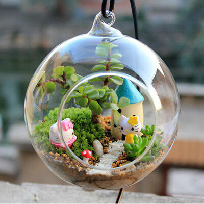 Hanging Glass Hydroponic Flower Planter Vase  Container Home Garden DIY Hot x 1