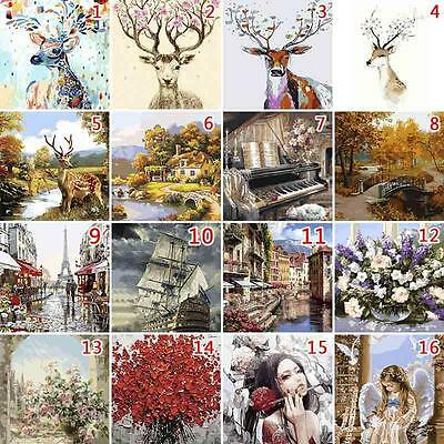 40*50cm DIY Multi-colored Paint By Number Digital Oil Painting Picture On Linen