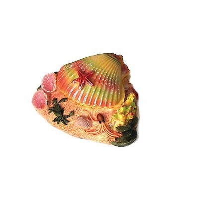 Aquarium Ornament Air Action Colourful Tropical Shell