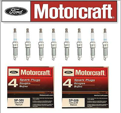 Motorcraft SP-509 Double Platinum Spark Plugs HJFS-24FP - 8 PC