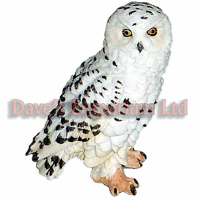 Snowy Owl by Juliana - Natural World Collection - Ornament Figurine 13cm