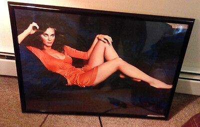 "LYNDA CARTER poster 1977. 28x20"" Framed Original. Wonder Woman."