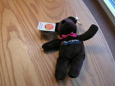 Bean bear - Embroidered Mount Snow Vermont USA New with Tags Brown