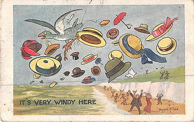 POSTCARD  COMIC DONALD McGILL     WEATHER  Related  It's  very  windy here