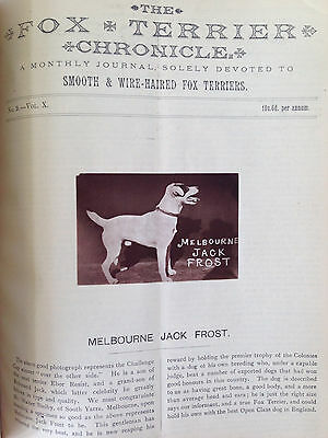 Antique Dog Book 1892 The Fox Terrier Chronicle RARE from England Smooth & Wire