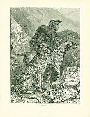 ANTIQUE Dog Print 1890 Scottish Deerhound Dogs and Scotsman Hunter