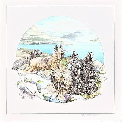 Skye Terrier Dog Print SIGNED and Numbered Limited Edition by Barbara Hands