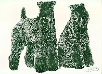 Dog Print Kerry Blue Terrier by Lyn St. Clair Stubbs
