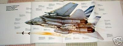WOW! GRUMMAN F-14 TOMCAT POSTER picture fighter jet sundowners