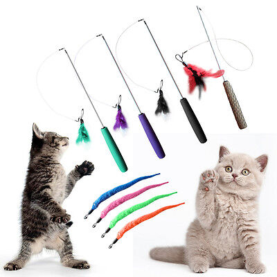 Drôle Animal De Compagnie Chat Chaton Teaser Plume Fil Chaser