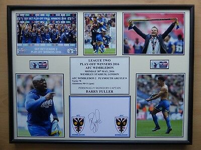 2015-16 AFC Wimbledon Play-Off Winners Display Signed by Barry Fuller (9343)