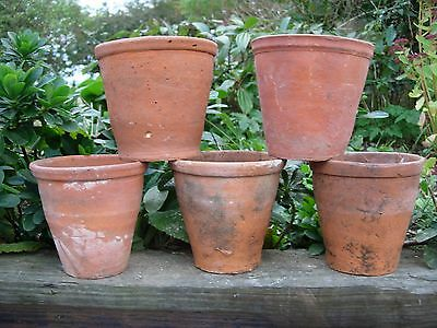"5 Old  Hand Thrown Terracotta Plant Pots Pelargonium Pots 5.5""  Diameter (94)"