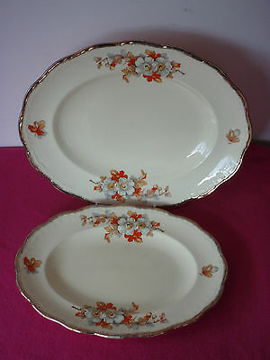 2 Vintage Oval Serving Platters - Alfred Meakin Marquis Shape