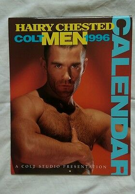 Vintage 1996 colt studio calendar magazine Gay interest hairy chested classic