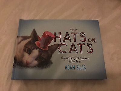 Cats In Hats Book