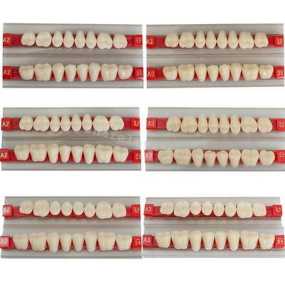 Tooth Denture Dental Teeth Shade G30/G32/G34  A2 A3 Sets Acrylic Resin Posterior