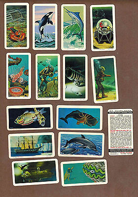 EXPLORING THE OCEANS: Collection of 145 BROOKE BOND TEA Cards, CANADA (1971)