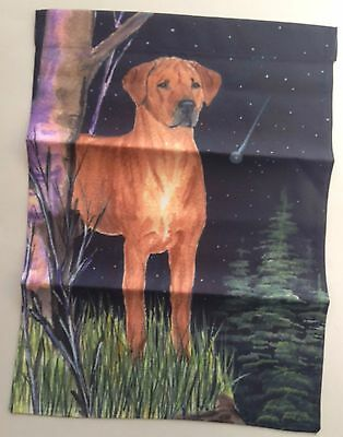 "Chesapeake Bay Retriever Dog Garden Flag USA  Double Sided 11"" x 15"" Night Stars"