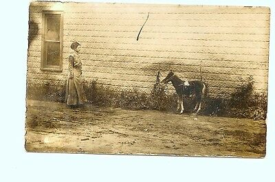 Postcard - Woman Approaches Small Horse - Mcnabb Family Photo