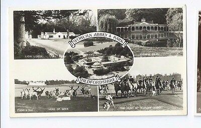 Postcard Woburn Abbey & Park Lion Lodge Deer Fox Hunt Chineses Dairy RP Bedford