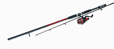 Shakespeare Firebird Spin 8ft 20-80g Rod and Reel Combo