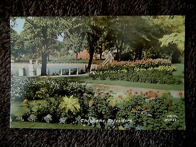 The Lake Belvedere Old Postcard
