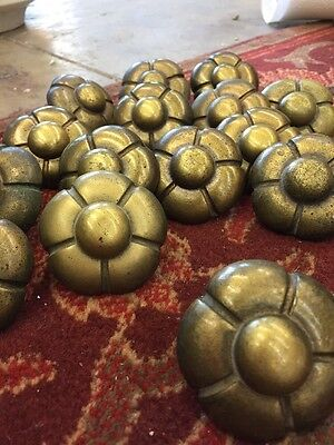 Drawer Pulls Mid Century Flower Brass Color