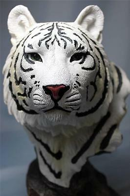 White Tiger Statue Bust Cat Blue Eyes Bengal Tiger Bust Figurine Sculpture New