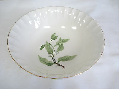 Vintage W S George Bolero 1950s Leafy Branch White Flowers B8760 Serving Bowl
