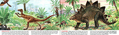 Sinclair Exciting World of Dinosaurs BRONTOSAURUS Triceratops T REX 1966 Booklet