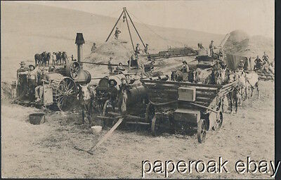 Steam Tractor With Threshing Crew Original ca.1900 Large Photo