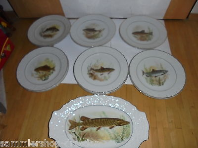 26458 7 pieces from vint fish service Mitterteich Porcelaine very good condition