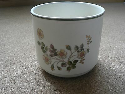 Marks and Spencer Autumn Leaves Large plant pot