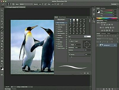 Adobe Photoshop CS6 Extended Edition Photo Editing Software **Fast Download**