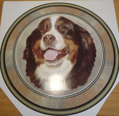 Ceramic Decal  LARGE PLATE SIZE    190mm  diam.      BERNESE MOUNTAIN  DOG