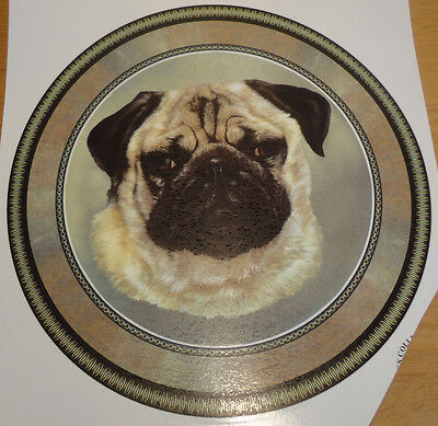 Ceramic Decal   LARGE PLATE SIZZE  190mm diam.     PUG