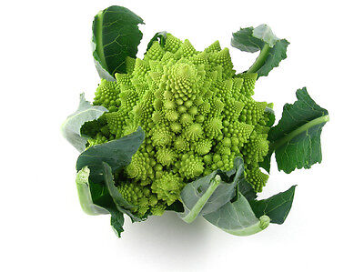 Brocolli Romanesco / Roman Cauliflower - NOT TAS or WA