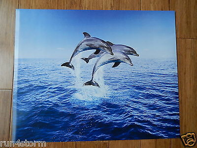 """Dolphin Trio Leaping PYRAMID 19 ¾"""" x 15 ¾"""" Poster"""