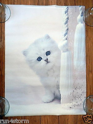 "1996 Romantic White Kitten RON DAY by Scandecor 16 ½"" x 22 ¾"" Poster"
