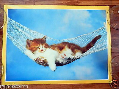 "Kitten Cat Sleeping on Hammock 16 ½"" x 12"" Poster"
