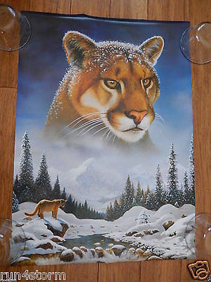 "Mountain Lion Art by Scandecor 16 ½"" x 23"" Poster"