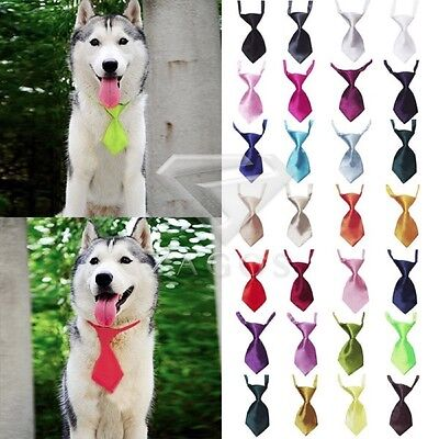Cute Chat chien Teddy Cravate Animaux Novelty Grooming Collier d'arc Echarpe