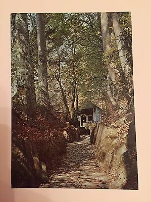 Vintage Postcard Hohle Gasse Tell's Chapel Switzerland Unposted