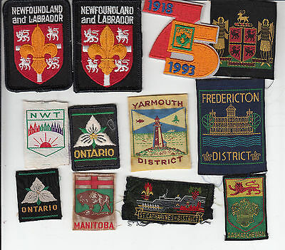 Boy Scout Badges Canada Collection (258)