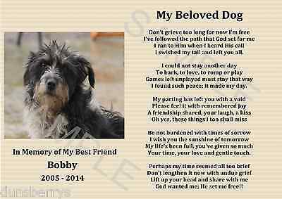A4 Dog/cat/pet Personalised Photo Memorial/bereavement/remembrance Poem/picture